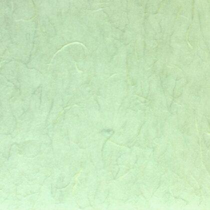 Αμπαζούρ πάπυρος λαχανί
