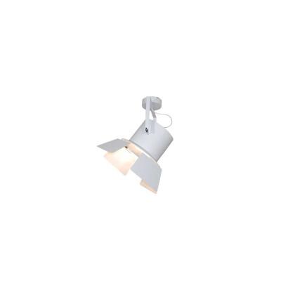 Χειροποίητο οροφής μεταλλικό φωτιστικό οροφής σε σχήμα προβολέας με πτερύγιο